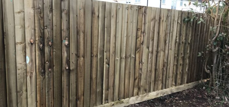 Garden Fence Renewal